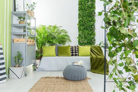 Séjour décoration tropicale - déco en ligne pas cher